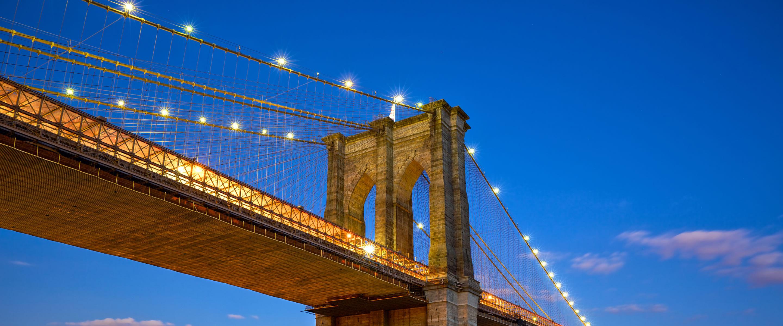 New York profile image
